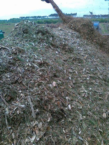 Kupimy zrębkę! - kupimy biomasę leśną!