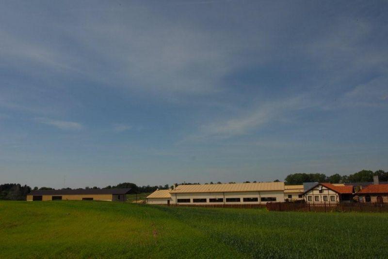 Fabryka Okien i Drzwi Drewnianych Na Sprzedaż
