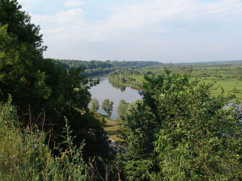 Ukraina.Staw rybny,35ha + torfowiska,30ha.Wydzierzawie