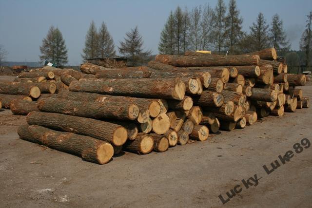 Sprzedam drewno, surowiec jesionowy, jesion, parkiet.