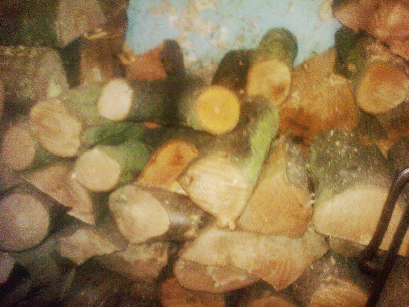 Drewno kominkowe - leszczyna