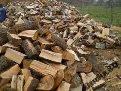 Drewno kominkowe i opalowe
