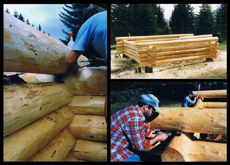 kurs budowy domów z bali okrągłych