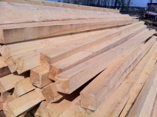 Drewno -Białoruś