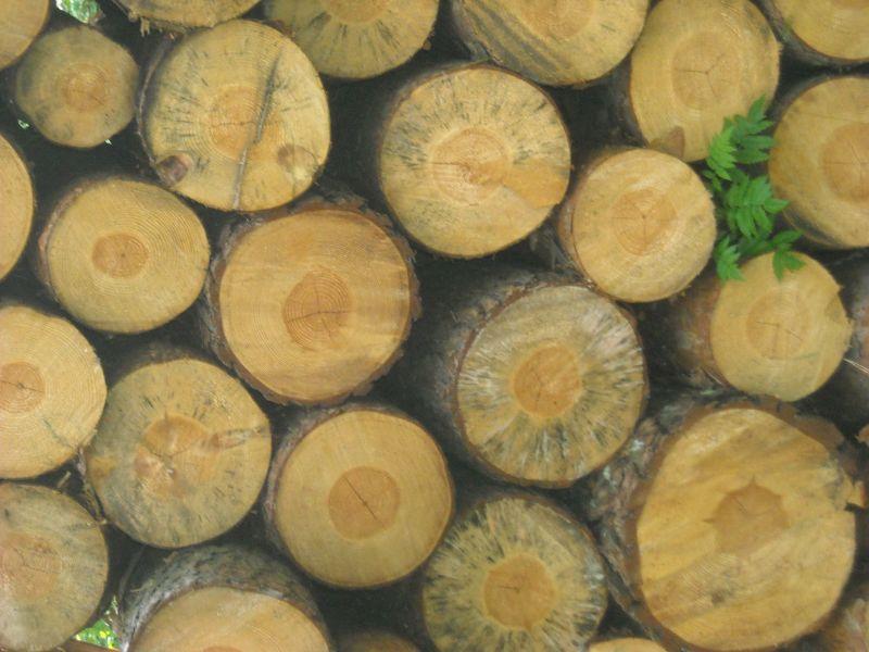 Sprzedam drewno paletowe