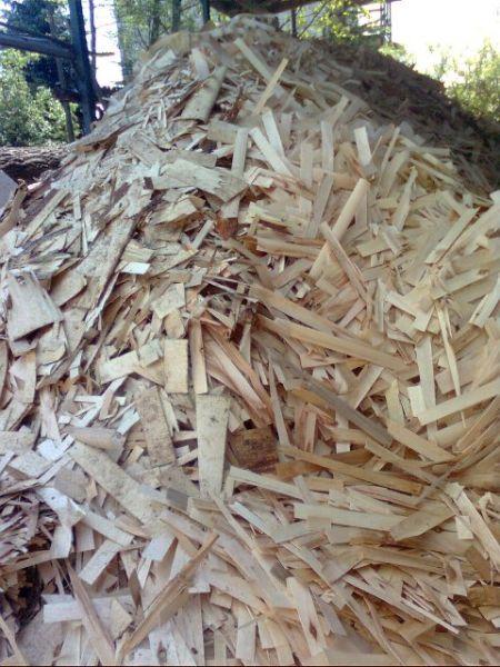 Sprzedam odpady drzewne,trociny