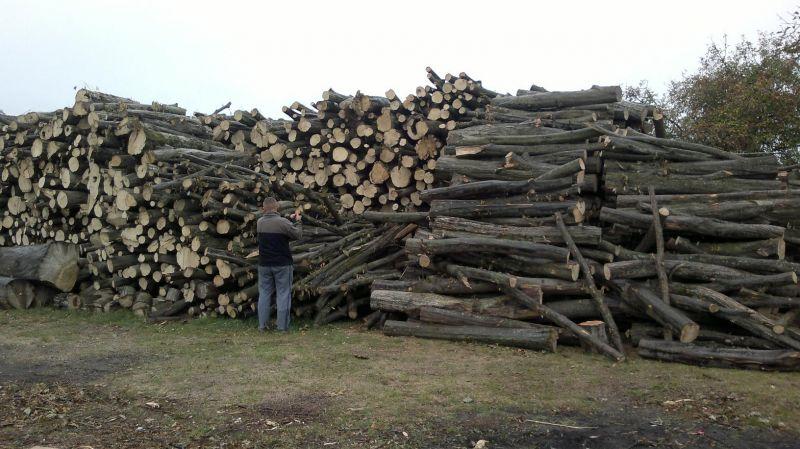 Drewno opałowe, kominkowe w kłodach