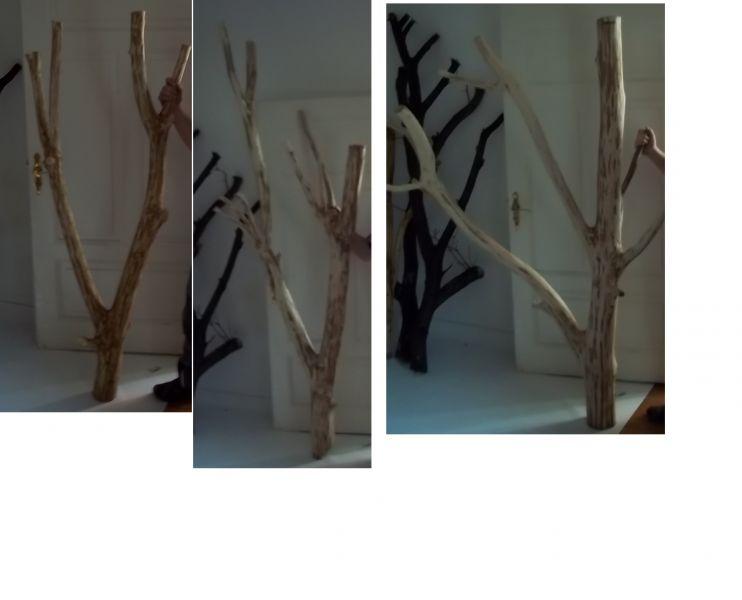 konary- drewno liściaste