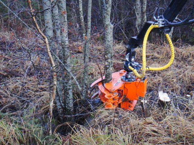 Rewelacja z Finlandi już w Polsce - głowice do pozyskania samosiejek z pól, rowów, dróg.