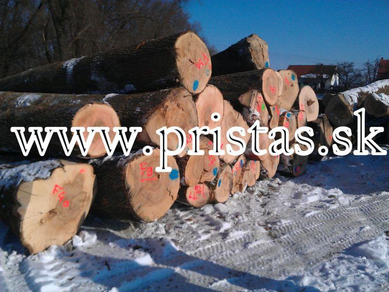 Jesion drewno okrągłe białe z 50E/m3