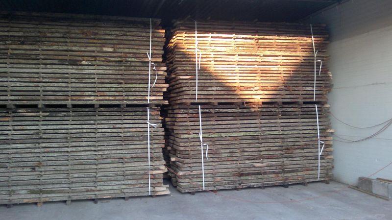 Suszenie desek, różnie gatunki drewna
