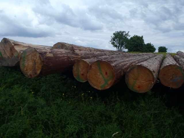 Sprzedam Bale drewniane powyżej 40cm sezonowane