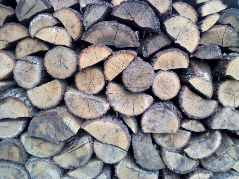 Drzewo drewno kominkowe opałowe