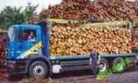 Drewno Kominkowe Śląsk