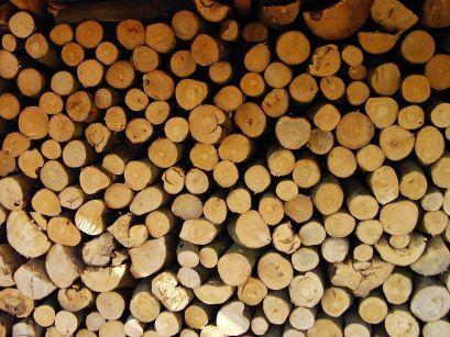 tanie drewno opałowe