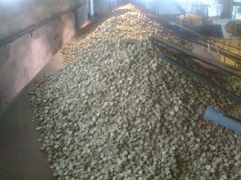 Carbo Eco Sprzeda brykiety agro!!!