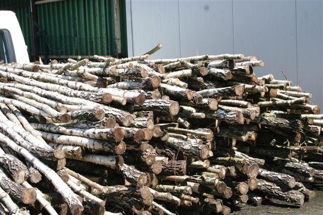 Sprzedam drewno opałowe, drewno kominkowe, brzoza, (woj.pomorskie)