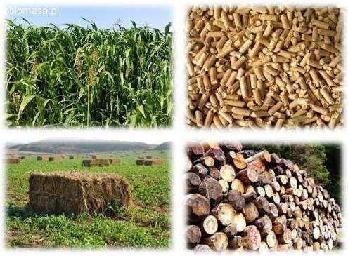 KUPIMY BIOMASE AGRO ORAZ LESNA