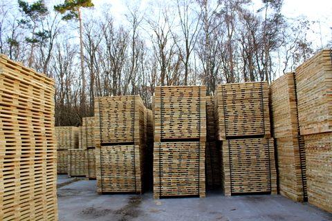 Ukraina.Tani surowiec z Lasow Panstwowych,duze mozliwosci przerobowe