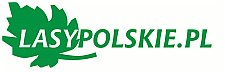 Lasy Polskie