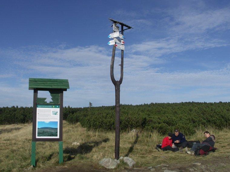 Praktyczne wykorzystanie ''wideł'' przy oznakowaniu szlaków w Karkonoskim Parku Narodowym, czyli ''wada drewna'' jako zaleta