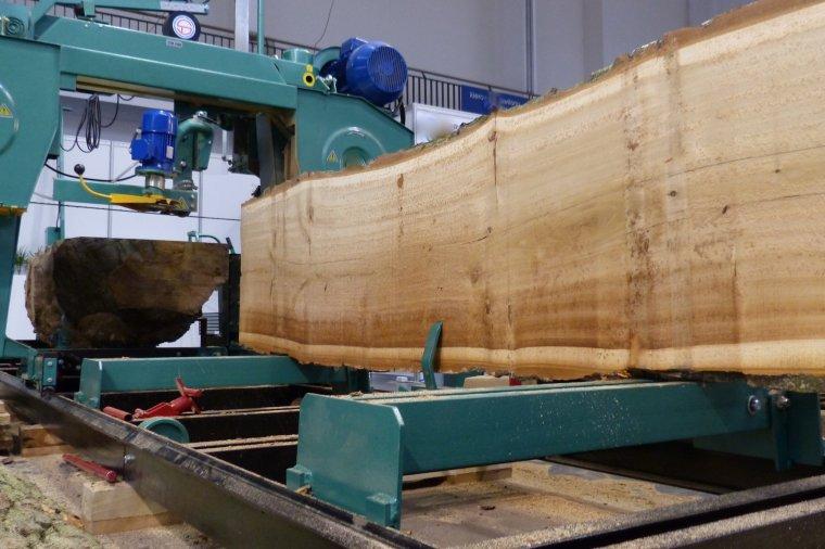 Białoruski przemysł drzewny zanotował spadek produkcji