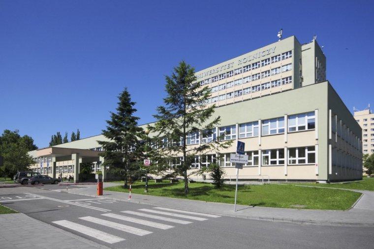 Przetwórstwo Drewna - nowy kierunek studiów na krakowskim Wydziale Leśnym