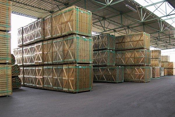 Zmiana w akcjonariacie Werth-Holz