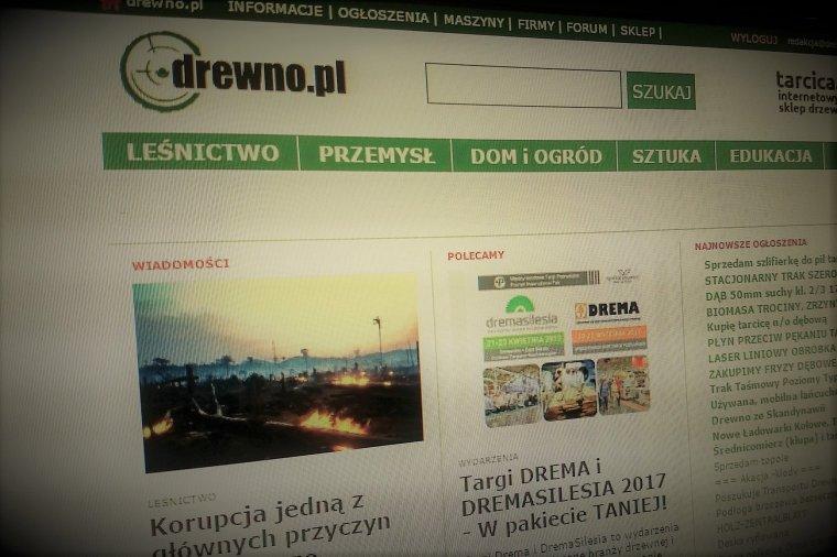 TOP 10 artykułów portalu Drewno.pl w 2016 roku