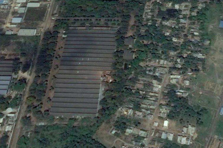 Forte Planuje Ekspansję W Indiach Drewnopl