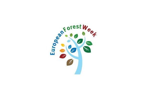 Minister Środowiska powołał zespół ds. organizacji Europejskiego Tygodnia Leśnego