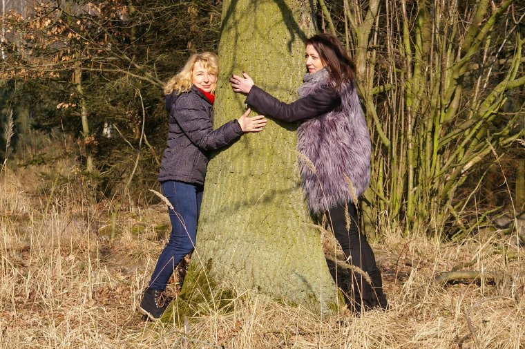 Drzewoterapia - warto przytulić się do drzewa