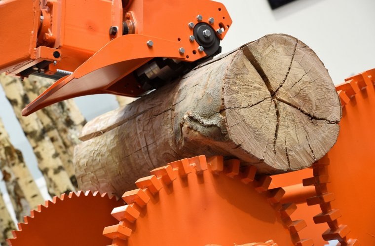 Sawmill Technology: Second major display category within the primary timber processing sector. (Primultini SRL, Halle 25/K26)