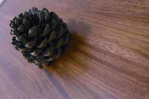 <font color=gray>Podłoga drewniana <br>Royal Floor Jatoba</font>