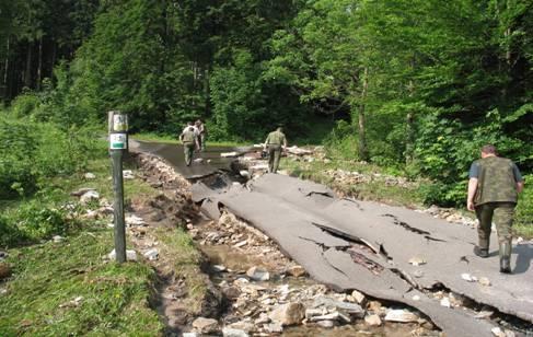 Zniszczona droga na terenie Nadleśnictwa Kamienna Góra
