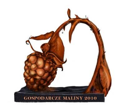 Gospodarcze Maliny 2010