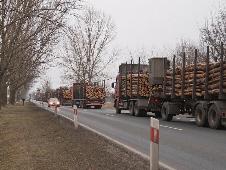 Prawidłowo załadowane ciężarówki oznaczają wzrost bezpieczeństwa przewozu drewna