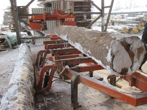 Cięcie drewna na trakach taśmowych w warunkach zimowych