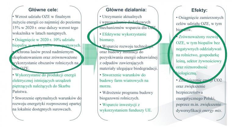 Rozwój wykorzystania odnawialnych źródeł energii, w tym  biopaliw – jeden z priorytetów polityki energetycznej Polski