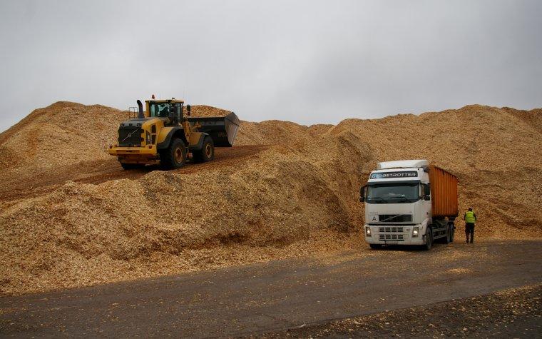 Informacja o sposobie kwalifikowania drewna i materiału drzewnego do odnawialnych źródeł energii.
