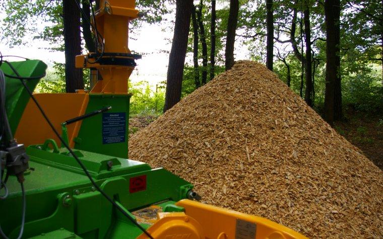 Elektrownie nie kontrolują pochodzenia spalanej biomasy leśnej choć mają taki obowiązek