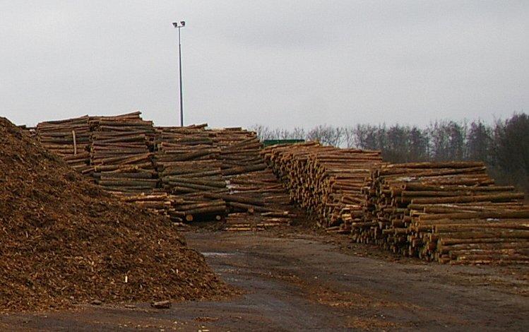 URE za stworzeniem krajowego systemu weryfikacji biomasy