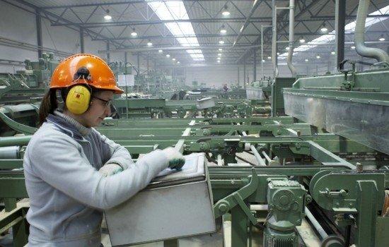 Hala produkcyjna zakładu produkcji drewnianej architektury ogrodowej w Zielonej Górze