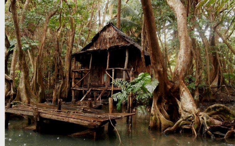 Indian River - Chatka wiedźmy Tia Dalmy