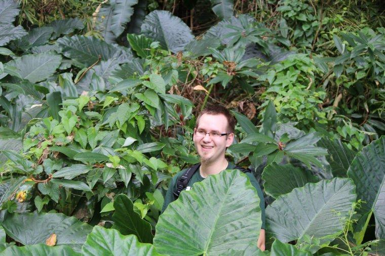 Spacer przez dżunglę