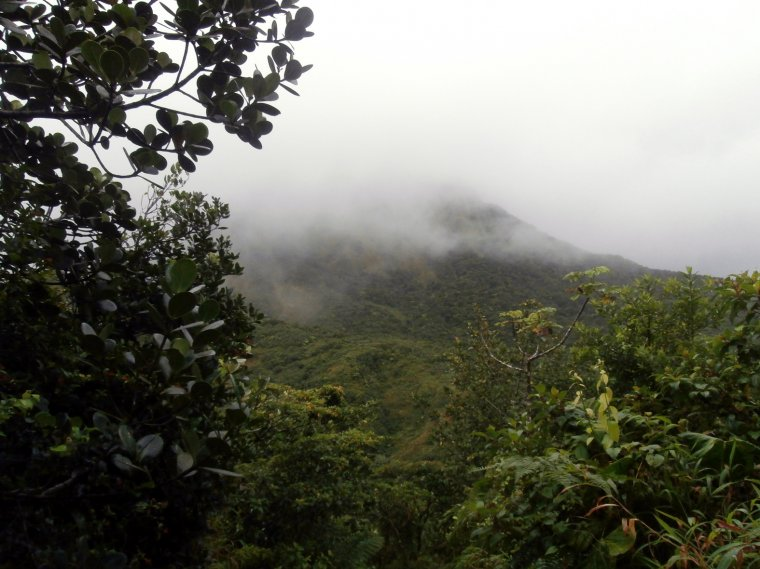 Widok na grań krateru i las mglisty