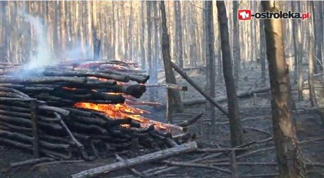 Ponad 100 ha lasów spłonęło w miniony weekend