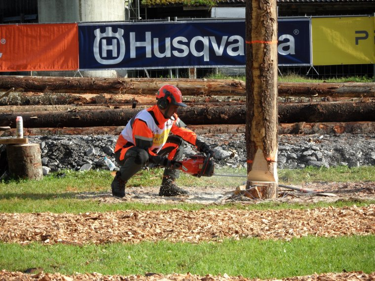 World Logging Championships 2014