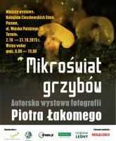 Mikroświat grzybów - wystawa fotografii Piotra Łakomego