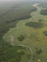 <b><center><small><font color=darkred>Widok doliny Rospudy<br> z balonu.</b>(Fot. K. Brzezińska) </font></small></center>